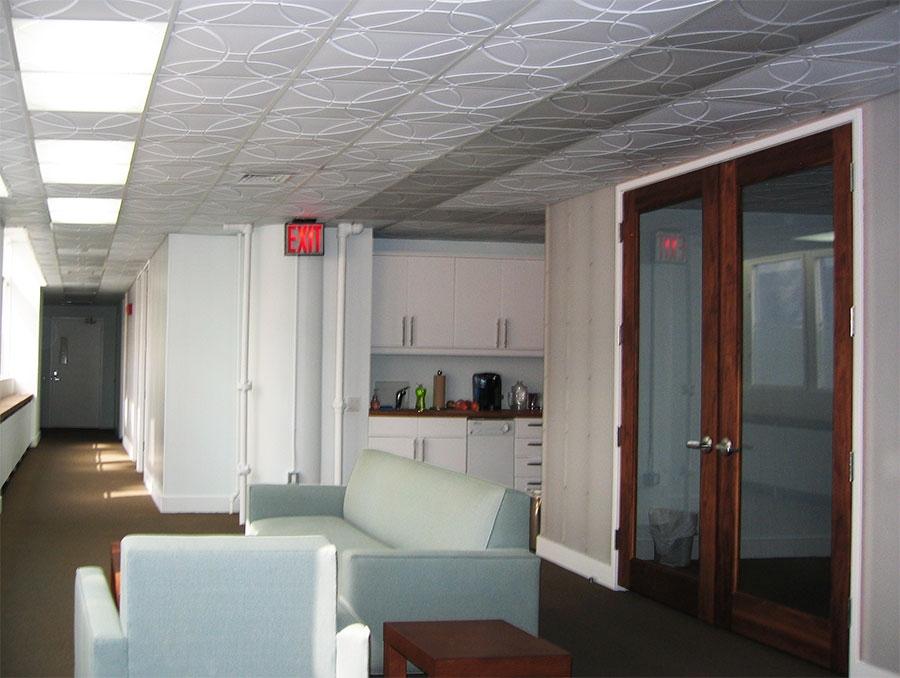 Transparent ceiling tiles