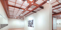 Thermoformed Ceilings Go Commercial