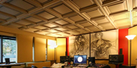 Why Vinyl Ceiling Panels Hit the Right Note for This Recording Studio